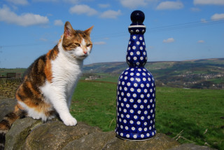 Oil Bottles & Vinegar Bottles