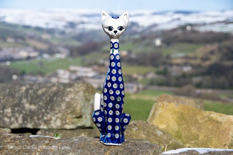 Andy Polish Pottery Peacock Leaf Cat from Polkadot Lane UK