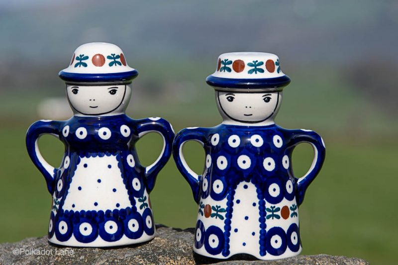 Fern Spot Salt and Pepper Pots by Ceramika Manufaktura Polish Pottery